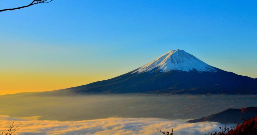 Japón considera que las tasas de retención de las ganancias de Extranjero